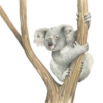 Koala von Marieke Nelissen