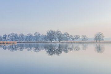 Zonsopgang - Serene weerspiegeling van bomen in het water - 2. van Yvon van der Laan