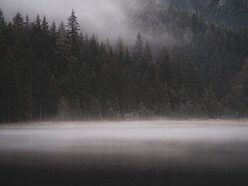 Lake Dobbiaco von Fernando Salgado