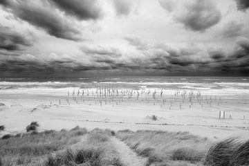 Nederlands strand (Petten, N-H) van Peter Baak