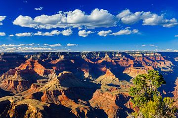 Grand-Canyon-Nationalpark, Arizona von Henk Meijer Photography
