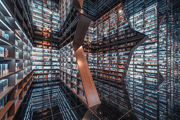 Kühle Buchhandlung, 天 祺 TIANQI von 1x