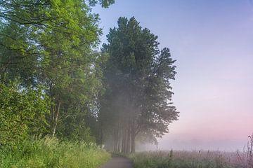 Sonnenaufgang im Steinse Groen, Gouda von Rossum-Fotografie