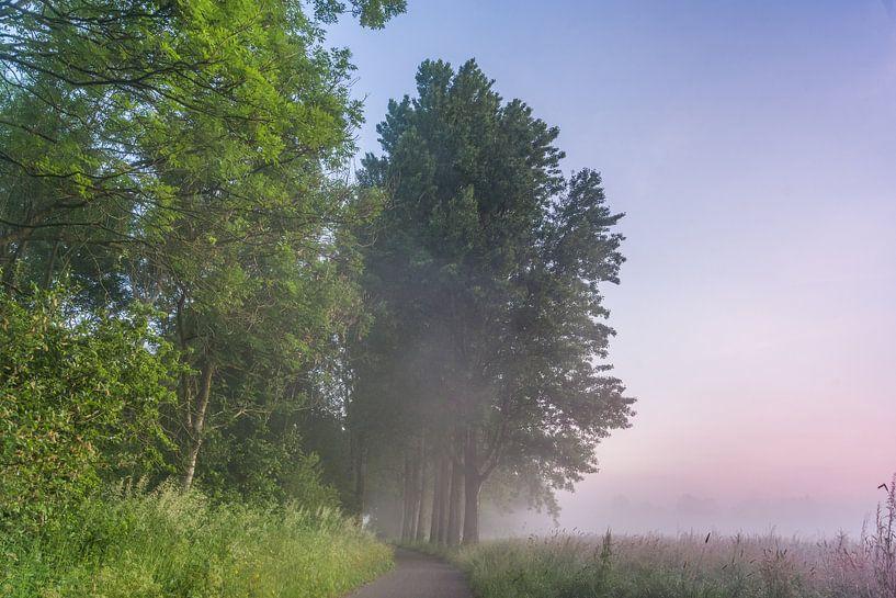 Zonsopkomst in het Steinse Groen, Gouda van M Van Rossum