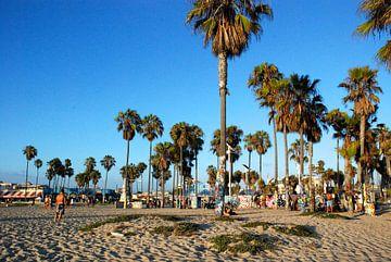 Venich Beach, California van Samantha Phung