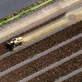 Spinazie oogsten vanuit de lucht van Arjan Groot