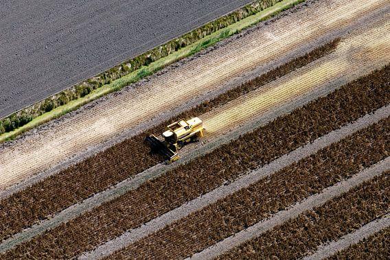 Spinazie oogsten vanuit de lucht
