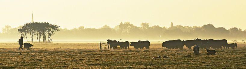 De koeien wachten al van Dirk van Egmond