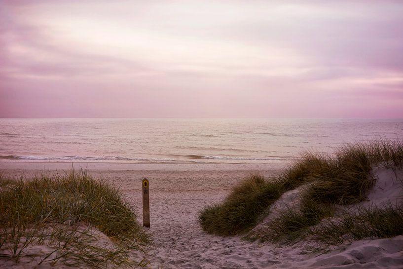 Stille am Morgen von Claudia Moeckel