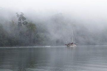 Schiff im Nebel von Joost Winkens