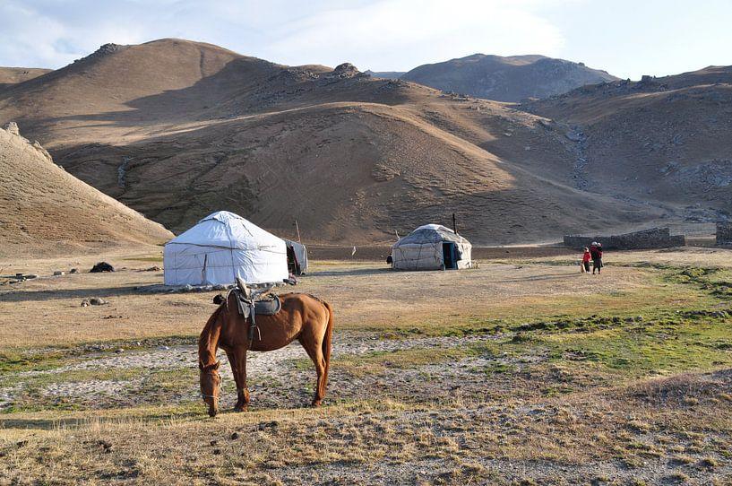 Typisch Kirgizisch landschap van Adri Vollenhouw
