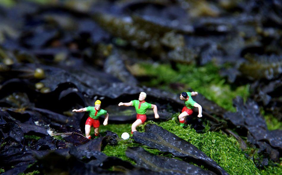 Fußball 3 van Ulrike Schopp