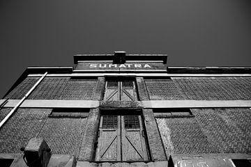 Sumatra von Aline van Weert