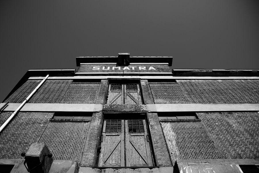 Sumatra van Aline van Weert
