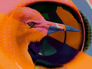 Vogel van Marcel van Berkel