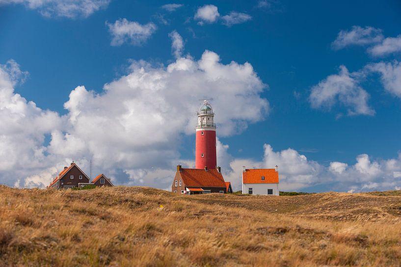 Vuurtoren op het Eiland Texel van Brian Morgan