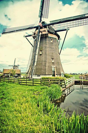 Nederlandse landschap  van Ariadna de Raadt