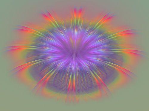 Regenboog van veren van Bernardine de Laat