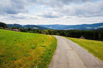 Idyllische Landschaft im Schwarzwald von Steven Van Aerschot