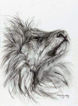 Lion fier. sur Ineke de Rijk