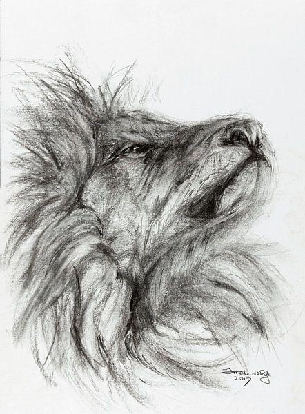 Stolzer Löwe. von Ineke de Rijk