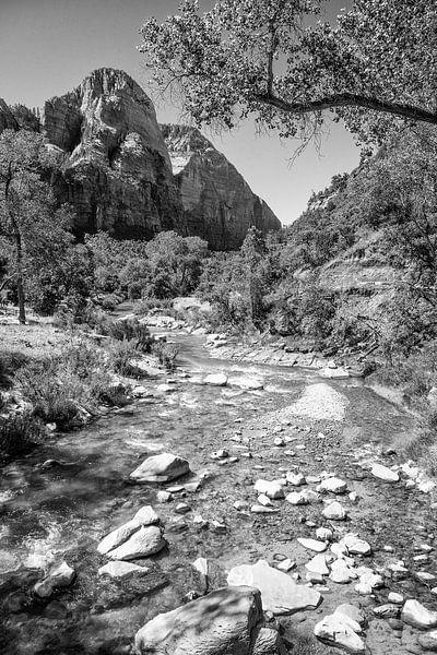 Zion National Park van Loek van de Loo
