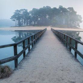 Dutch island van René Vierhuis