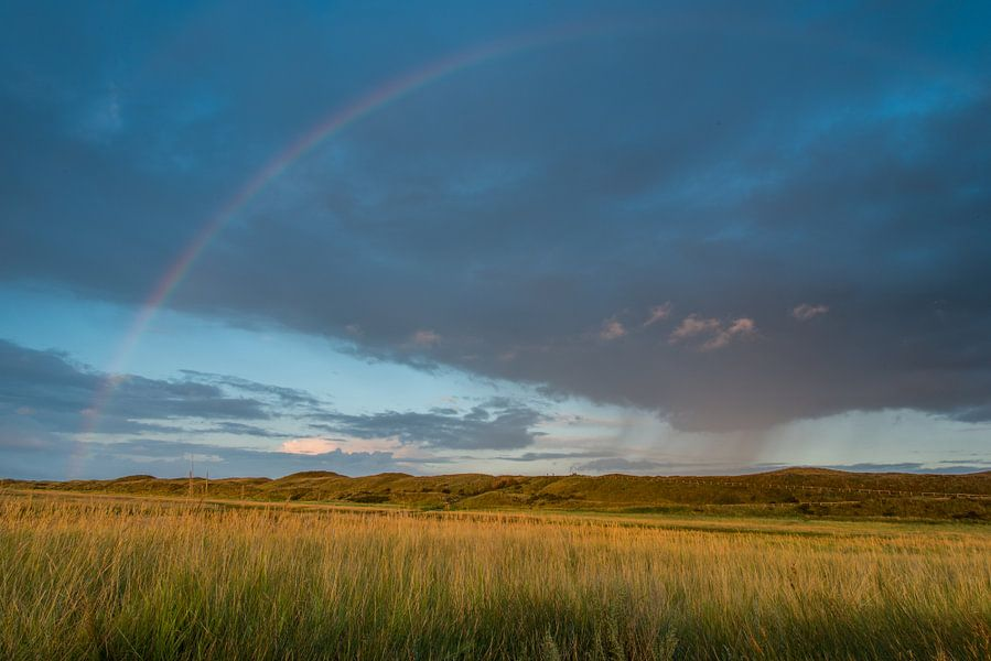Rainbow in the sky van Harald Harms