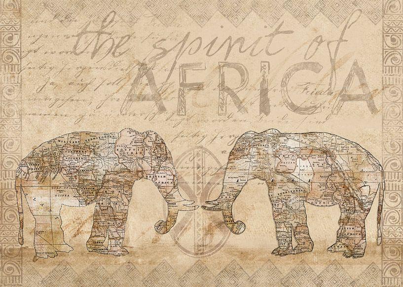 Afrika von Andrea Haase