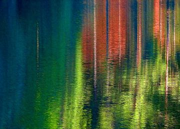 Reflections van Caroline Lichthart