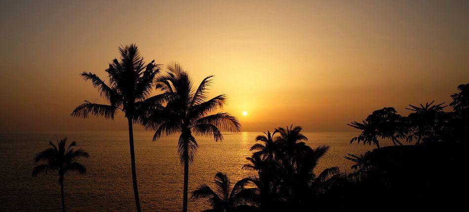 Sonnenuntergang Costa Adeje Teneriffa van Iwona Sdunek alias ANOWI