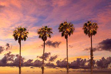 Zonsondergang met palmbomen van Melanie Viola