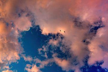 Wolkendek roze en dromerig van Marcel Kieffer