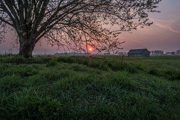 Weiland met boom en schuur bij zonsopkomst 02 von Moetwil en van Dijk - Fotografie