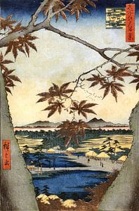 Utagawa Hiroshige De esdoornbladeren van Woodblock Prints