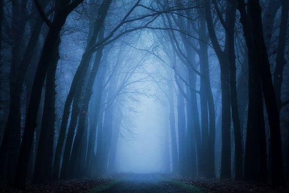 Mist in Lochem