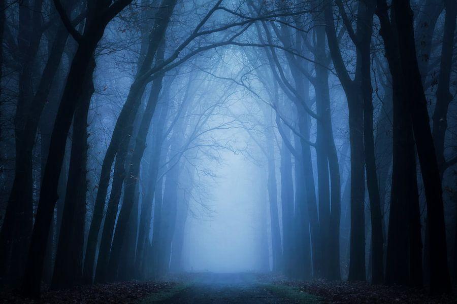 Mist in Lochem van Martin Podt