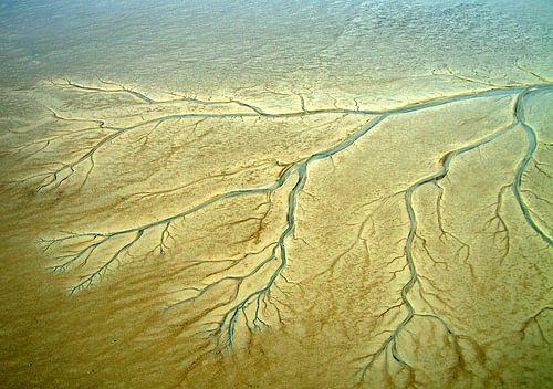 Geulen en prielen in de drooggevallen oostelijke Waddenzee