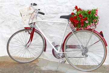 Fiets met bloemen, Zuid Italië van Inge Hogenbijl