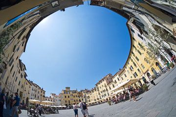 Lucca Italia van