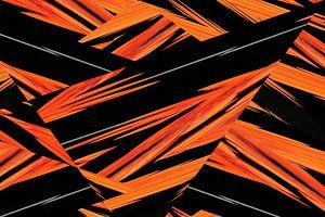 fotoGrafiek 33 (Components) van Hans Levendig (lev&dig fotografie)