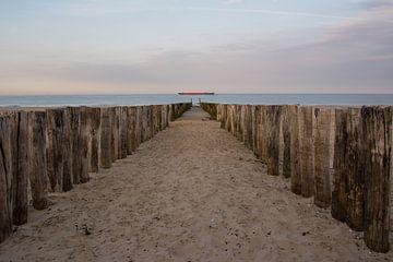 La côte vers la mer à la lumière du jour sur Menno Selles
