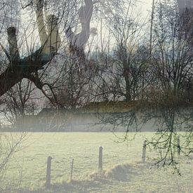 Boerderij in heiig ochtendlicht van Anita Snik-Broeken