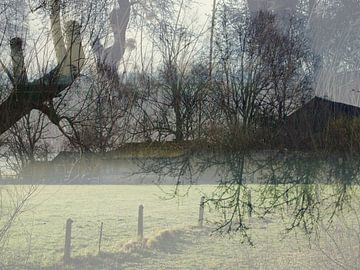 Heiig ochtendlicht van Anita Snik-Broeken