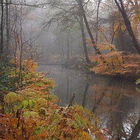 Herfst in Parklandschap De Overtuinen in Oranjewoud van Wilco Berga