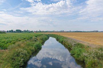 In de polders van Manuel Declerck