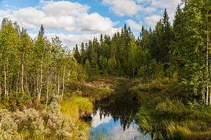Zweeds landschap met water