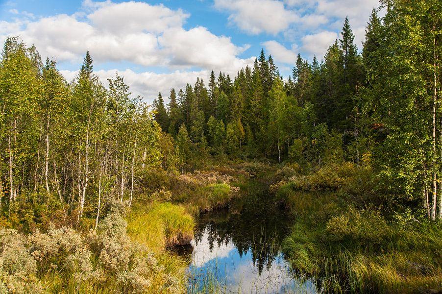 Zweeds landschap met water van Geertjan Plooijer
