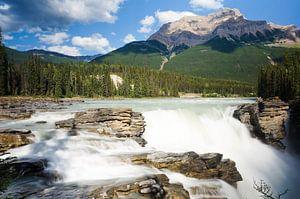 Athabasca Falls van
