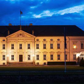 the federal palace von Bernd Hoyen